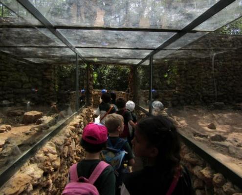 Visita al zoológico de Castellar