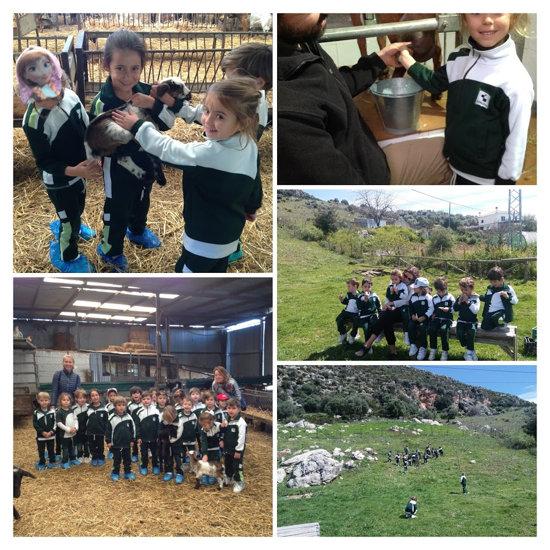 Educación Infantil Visita a la Quesería Sierra Crestellina, en Casares-2