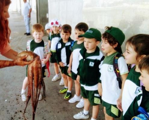 [Educación Infantil] EI5 visita el Puerto de Estepona