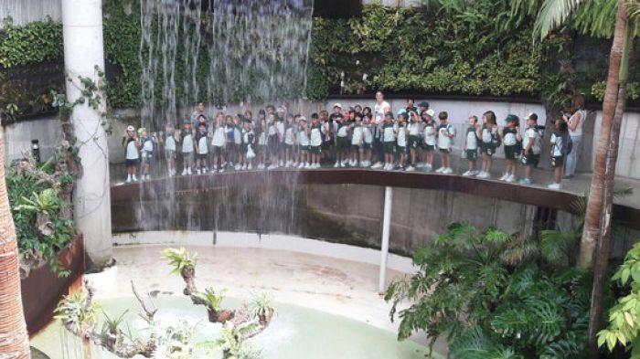 [Educación Primaria] Visita al Orquidario de Estepona