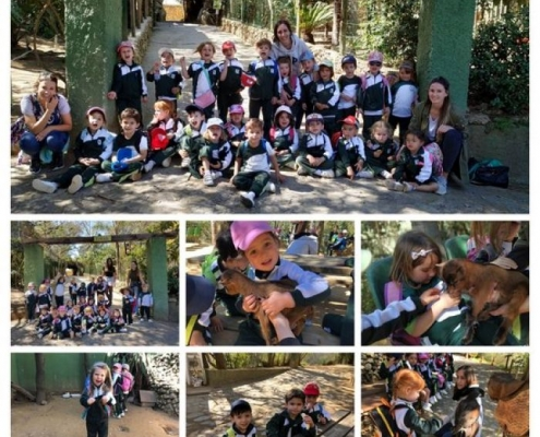 Excursión al Zoo de Castellar - 3 años