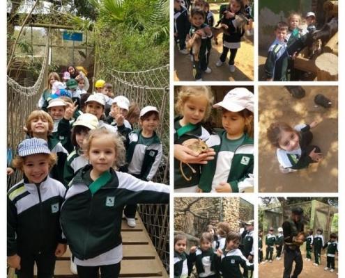 Excursión al Zoo de Castellar - 5 años