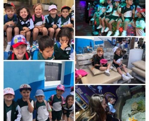 Alumnos de 3 años visitan Sea Life